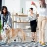 Beeld Vijf tips om stress op het werk te vermijden