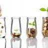 Beeld Vanaf vandaag kunt u Levenlanglerenkrediet aanvragen