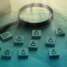 Beeld De 8 bouwstenen van Strategische Personeelsplanning (SPP)