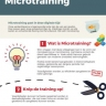 Beeld Infographic: wat is microtraining?