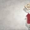 Beeld Werkt het stelsel van publieke en private financiering ZW en WGA?