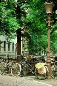 Beeld 11 werkgevers aan de slag om werknemers op de fiets te krijgen
