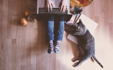 Beeld 'Online werken moet niet te gemakkelijk de norm worden'